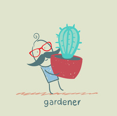 gardener carries a cactus