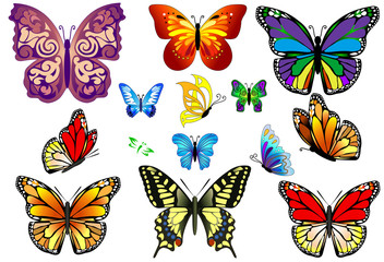 Set of Colorful Realistic Isolated Butterflies.