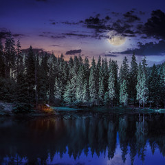Mountain lake in coniferous forest at night