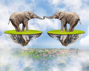 Loving Elephants - forever together. Love concept.