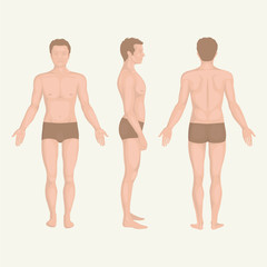 man body , front, back and side  human pose