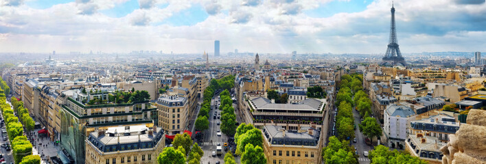 Wall Mural - View of Paris from the Arc de Triomphe.  .Paris. France.