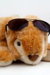 coniglio pelouche con occhiali da sole