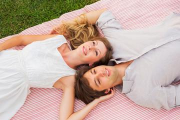 Romantic picnic in the park