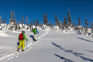 Ski tourists