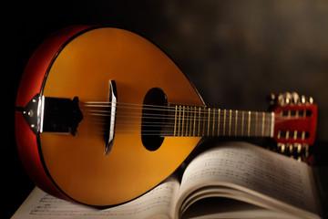Wall Mural - mandolino