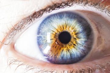 Macro Human Eye Multicolored