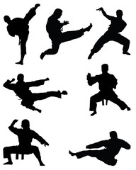 Black silhouettes of karate, vector