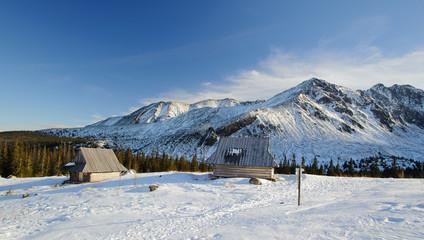 Fototapete - Polish Tatra mountains in winter