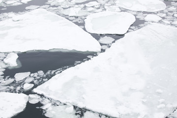 Ice floating on the sea