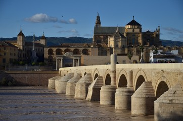 Roman bridge and Mosque -Cathedral - Cordoba, Spain