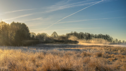 Photo sur Aluminium Bleu jean Wild meadow with morning mist