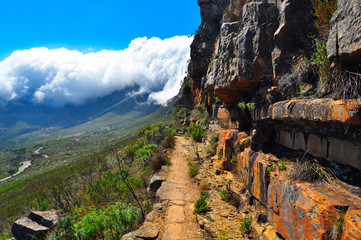 Table mountain South Africa hike trail Wall mural