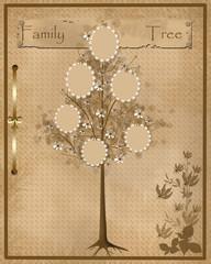 Family tree design for your photos into frames