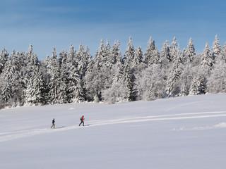 Ski de fond dans les Vosges