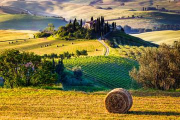 Wall Murals Honey Tuscany, landscape