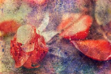 grunge artwork with rose flower