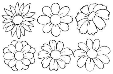 Flowers in doodle design