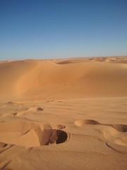 Sahara dz