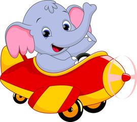 elephant riding a plane
