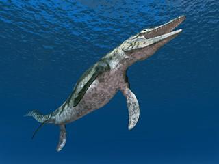 Mosasaurier Tylosaurus