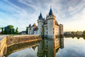 Fotorolgordijn Kasteel The chateau of Sully-sur-Loire, France