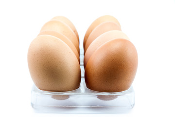 eggs in panel