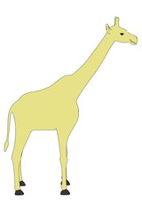 cartoon image of giraffe animal