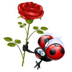 coccinella rosa rossa