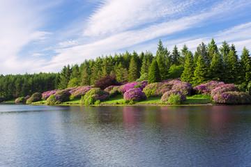 Kennick Dartmoor national park Devon Uk