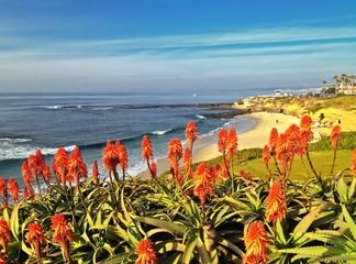 Scenic View of La Jolla Beach San Diego Southern California