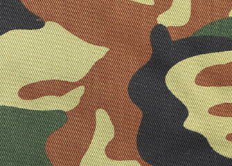 Close up of camouflage pattern.