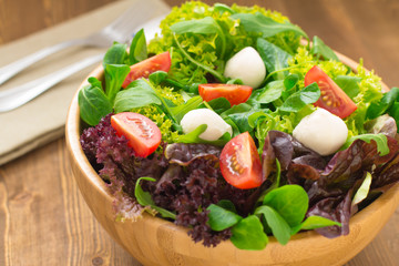 Mixed green salad with tomatoes and buffalo mozzarella cheese