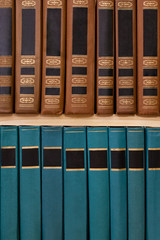Books on a bookshelf closeup
