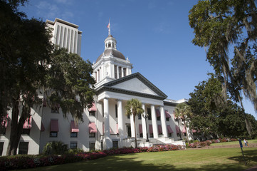 Tallahassee State Capitol buildings Florida USA Wall mural