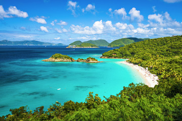 Acrylic Prints Caribbean Trunk Bay, St. John, United State Virgin Islands