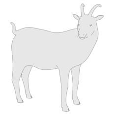cartoon image of goat animal