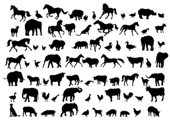 Animals & Birds Silhouette set - vector