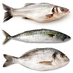 tris di pesce