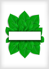 Green leaves with banner