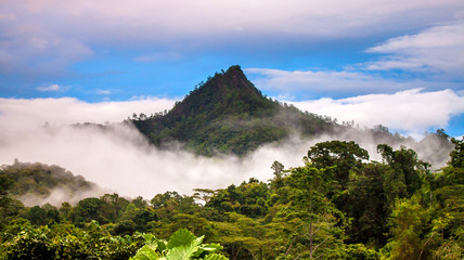 Mountain in clouds, northern Thailand