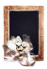 Vintage Blank wooden framed blackboard with group of Quail eggs