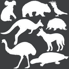 vector set of white australian animals silhouettes