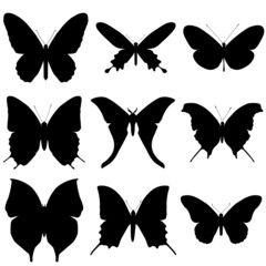 Butterfly silhouette set. Icon collection.