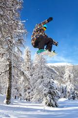 Fototapete - jump between the trees
