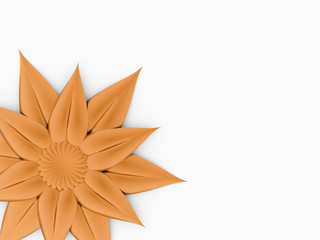 Beautiful orange rose flower on white