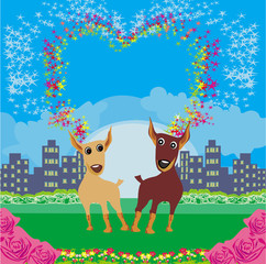 Cute dogs in love