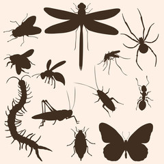 Vector Set of  Insects Silhouettes