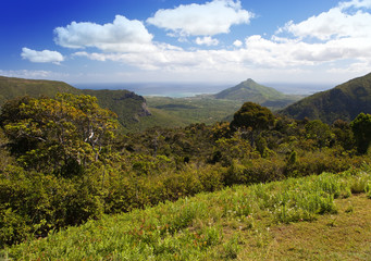 View of the wood, mountains and ocean. Mauritius