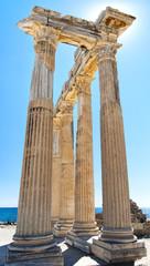 Side Temple of Apollo 20